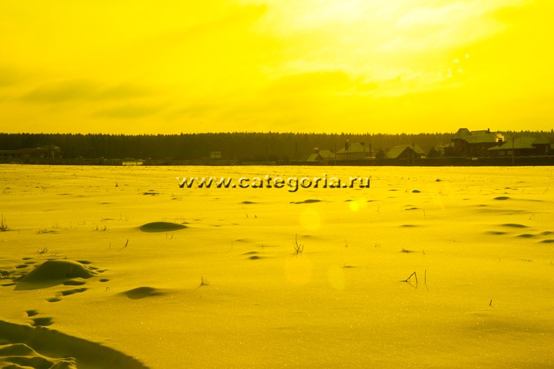 Тест-очков-509-Gold-Mirror:Yellow Tint:GD.jpg